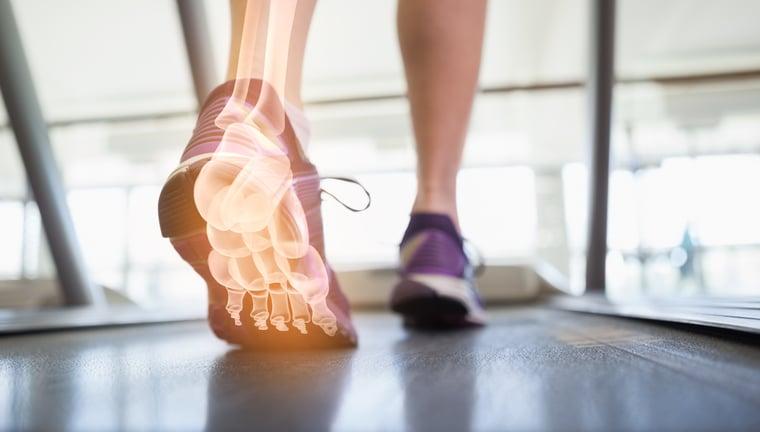 foot anatomy on treadmill